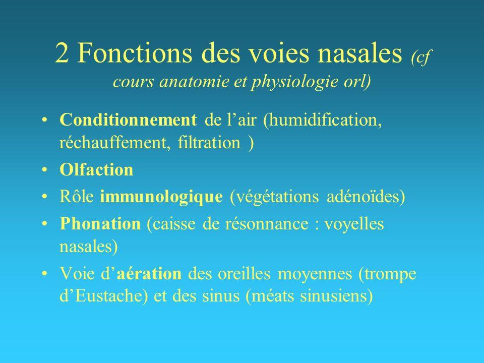 2 Fonctions des voies nasales (cf cours anatomie et physiologie orl) Conditionnement de lair (humidification, réchauffement, filtration ) Olfaction Rô