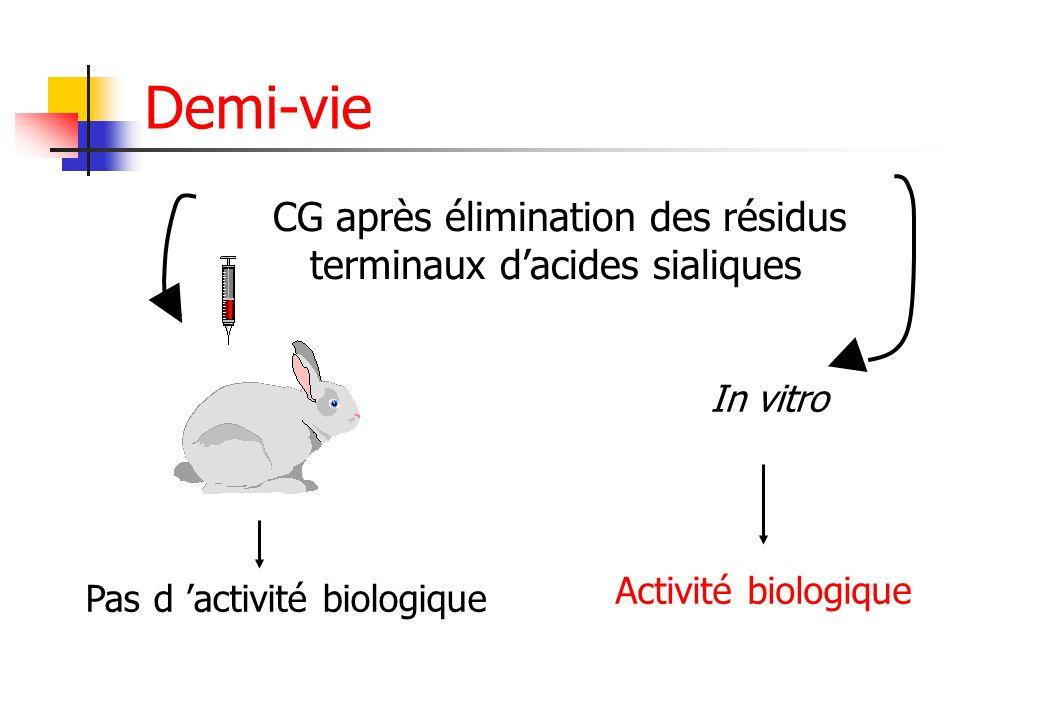 CG après élimination des résidus terminaux dacides sialiques In vitro Activité biologique Pas d activité biologique Demi-vie