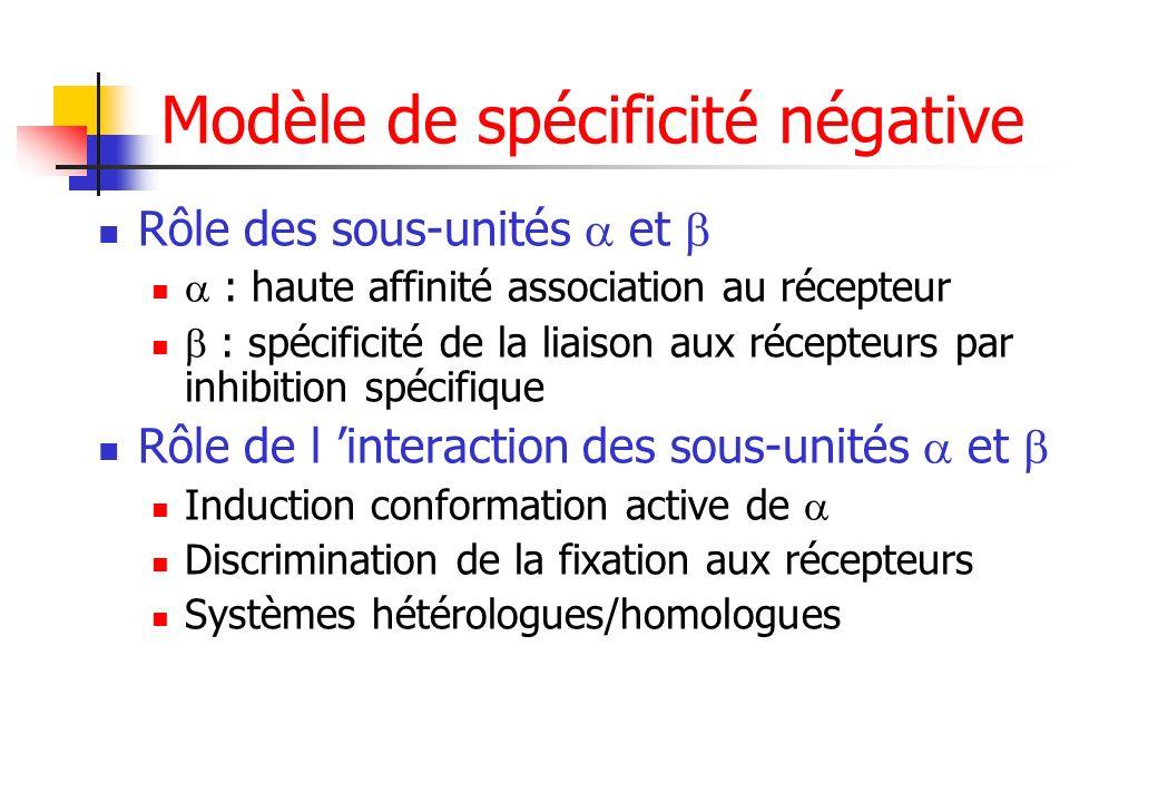 Rôle des sous-unités et : haute affinité association au récepteur : spécificité de la liaison aux récepteurs par inhibition spécifique Rôle de l inter