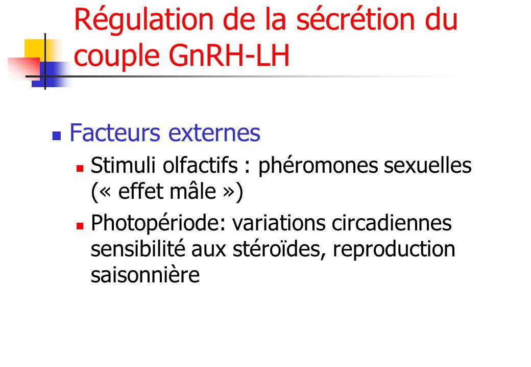 Régulation de la sécrétion du couple GnRH-LH Facteurs externes Stimuli olfactifs : phéromones sexuelles (« effet mâle ») Photopériode: variations circ