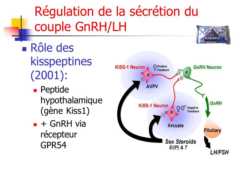 Régulation de la sécrétion du couple GnRH/LH Rôle des kisspeptines (2001): Peptide hypothalamique (gène Kiss1) + GnRH via récepteur GPR54