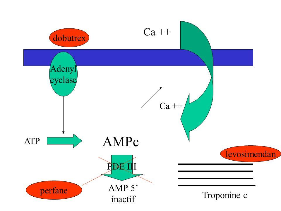 DROGUES INOTROPES contractilité constriction vaisseaux vasodilatation Dopamine < 5 gamma/kg/mn 00++ (rein) Dopamine > 5gamma/kg/mn +++++0 dobutamine++