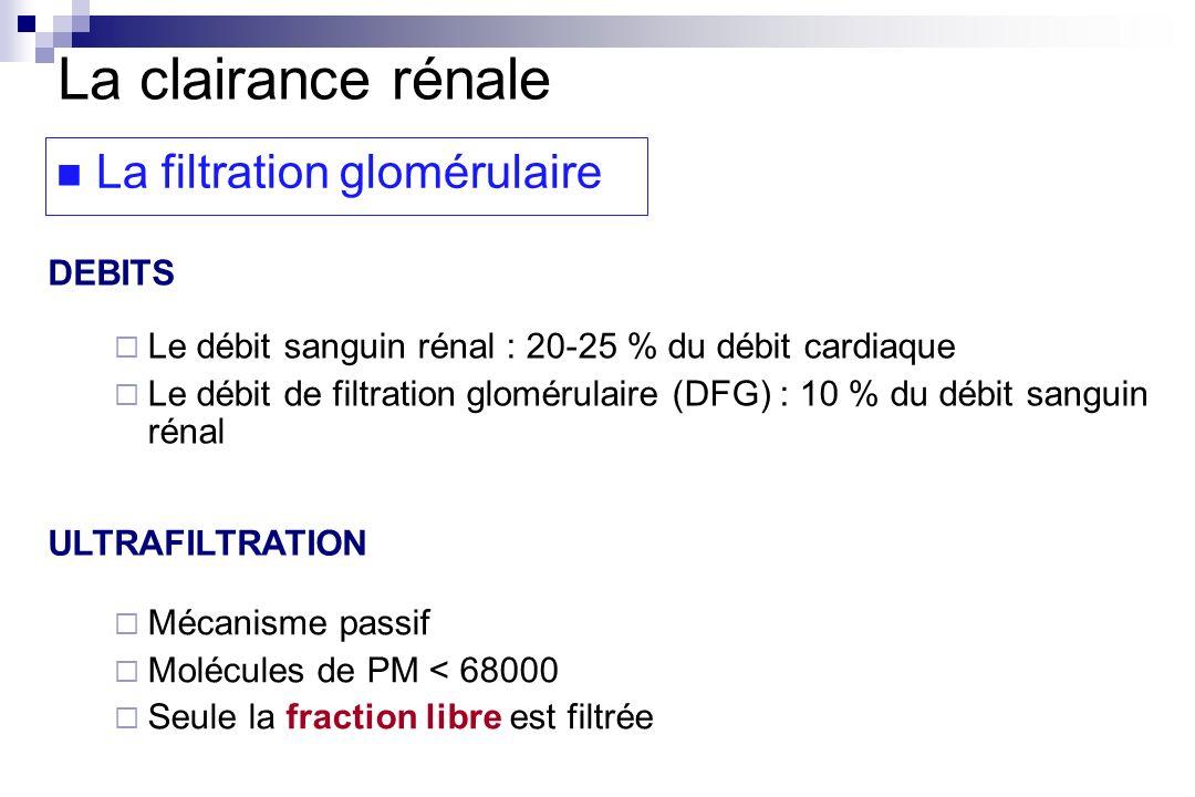 DEBITS ULTRAFILTRATION La clairance rénale La filtration glomérulaire Mécanisme passif Molécules de PM < 68000 Seule la fraction libre est filtrée Le