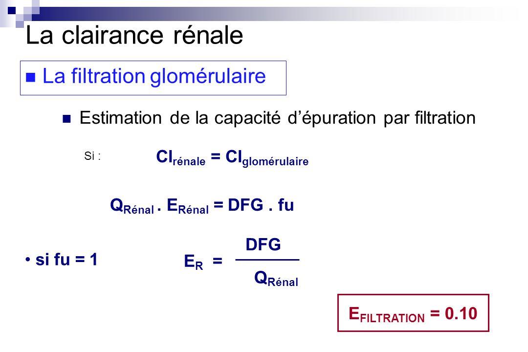 Cl rénale = Cl glomérulaire Q Rénal. E Rénal = DFG. fu si fu = 1 E R = DFG Q Rénal E FILTRATION = 0.10 La clairance rénale La filtration glomérulaire