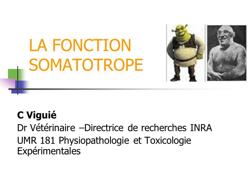 LA FONCTION SOMATOTROPE C Viguié Dr Vétérinaire –Directrice de recherches INRA UMR 181 Physiopathologie et Toxicologie Expérimentales