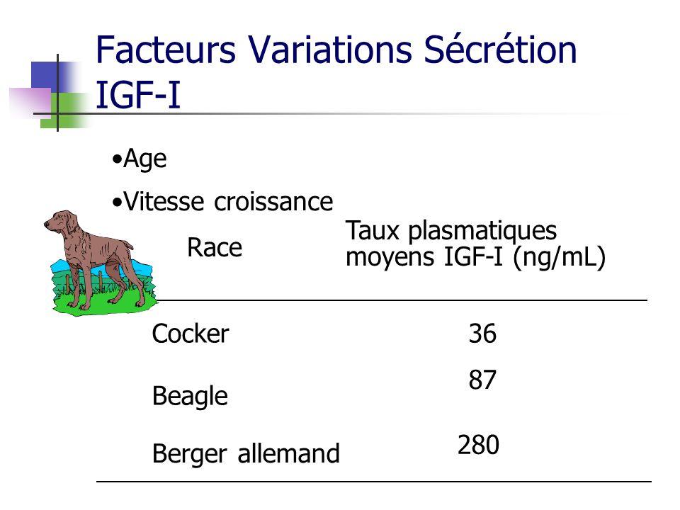 Facteurs Variations Sécrétion IGF-I Age Vitesse croissance Race Taux plasmatiques moyens IGF-I (ng/mL) Cocker Beagle Berger allemand 36 87 280