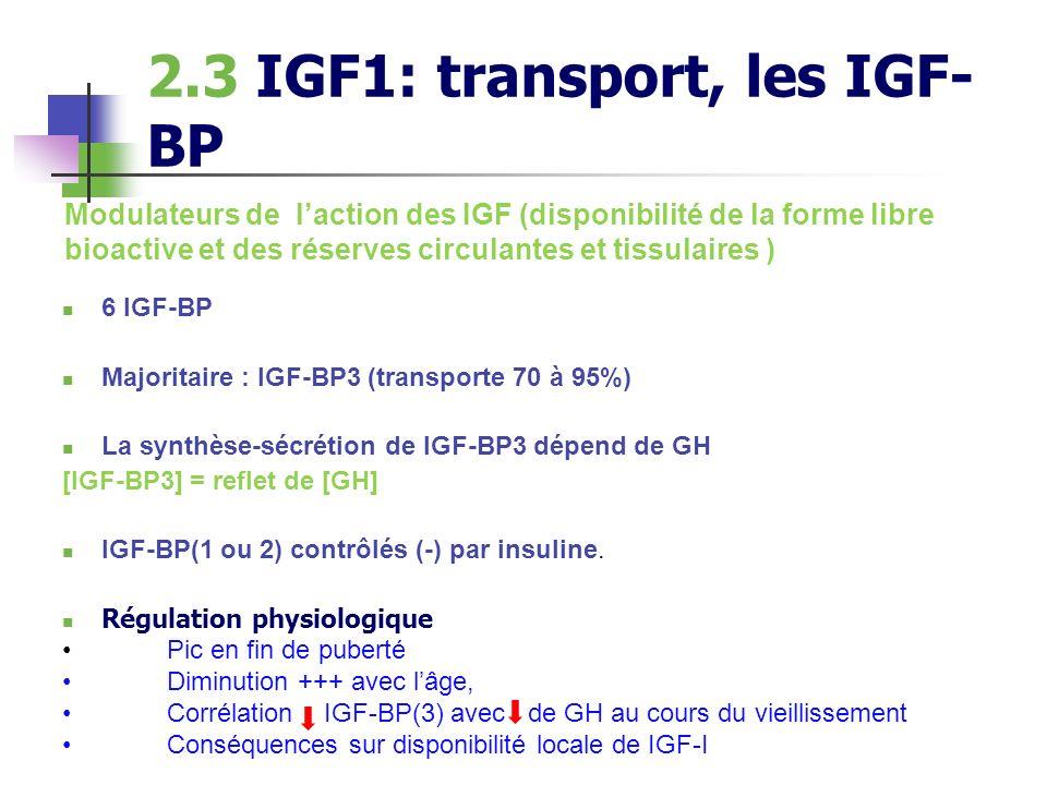 2.3 IGF1: transport, les IGF- BP 6 IGF-BP Majoritaire : IGF-BP3 (transporte 70 à 95%) La synthèse-sécrétion de IGF-BP3 dépend de GH [IGF-BP3] = reflet
