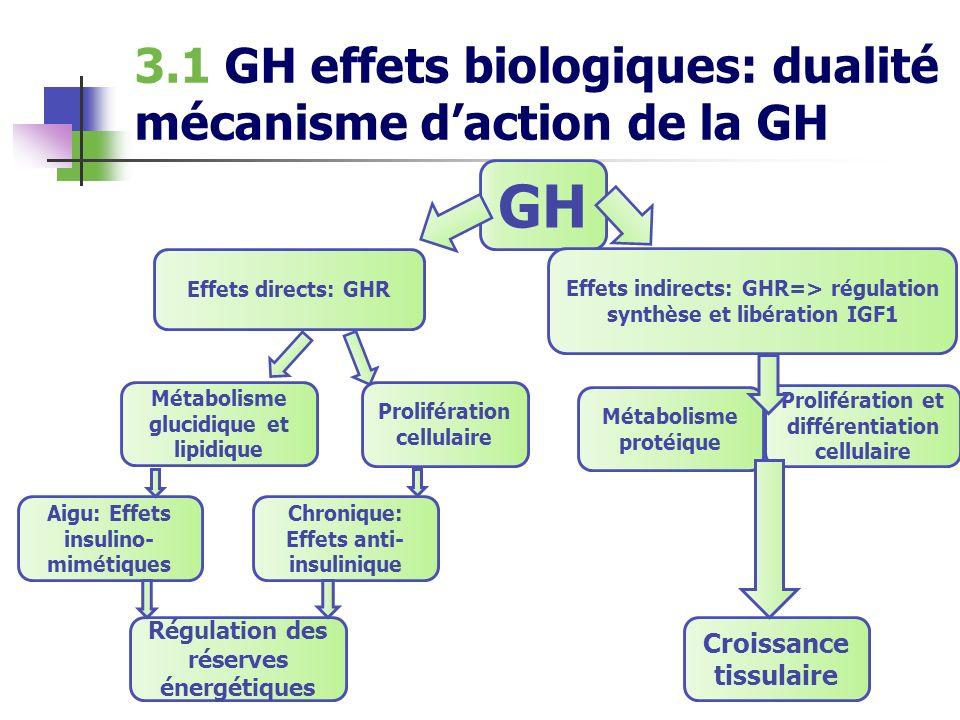 3.1 GH effets biologiques: dualité mécanisme daction de la GH GH Effets indirects: GHR=> régulation synthèse et libération IGF1 Effets directs: GHR Pr