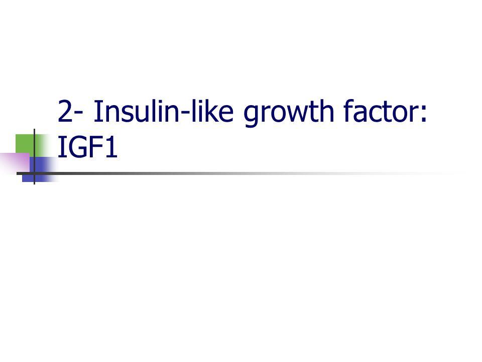 2.1 IGF1: Structure et production Protéines facteur de croissance Famille IGFs: analogie structurale Analogie structurale avec insuline: réactions croisées à forte concentrations Production ubiquitaire Production hépatique: IGF1 circulante Synthèse sous contrôle de la GH
