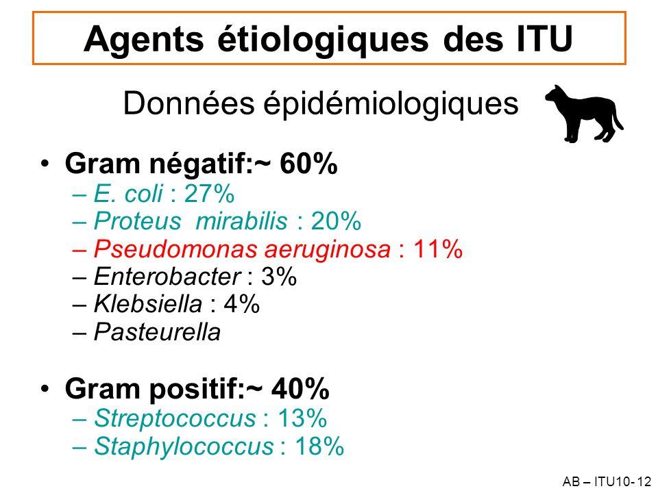 AB – ITU10- 12 Agents étiologiques des ITU Gram négatif:~ 60% –E. coli : 27% –Proteus mirabilis : 20% –Pseudomonas aeruginosa : 11% –Enterobacter : 3%