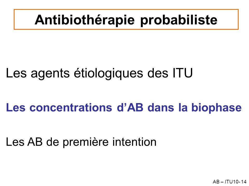 AB – ITU10- 14 Les agents étiologiques des ITU Antibiothérapie probabiliste Les concentrations dAB dans la biophase Les AB de première intention