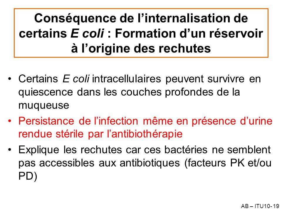 AB – ITU10- 19 Conséquence de linternalisation de certains E coli : Formation dun réservoir à lorigine des rechutes Certains E coli intracellulaires p