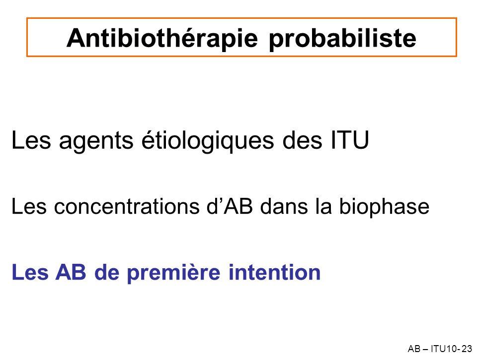 AB – ITU10- 23 Les agents étiologiques des ITU Antibiothérapie probabiliste Les concentrations dAB dans la biophase Les AB de première intention