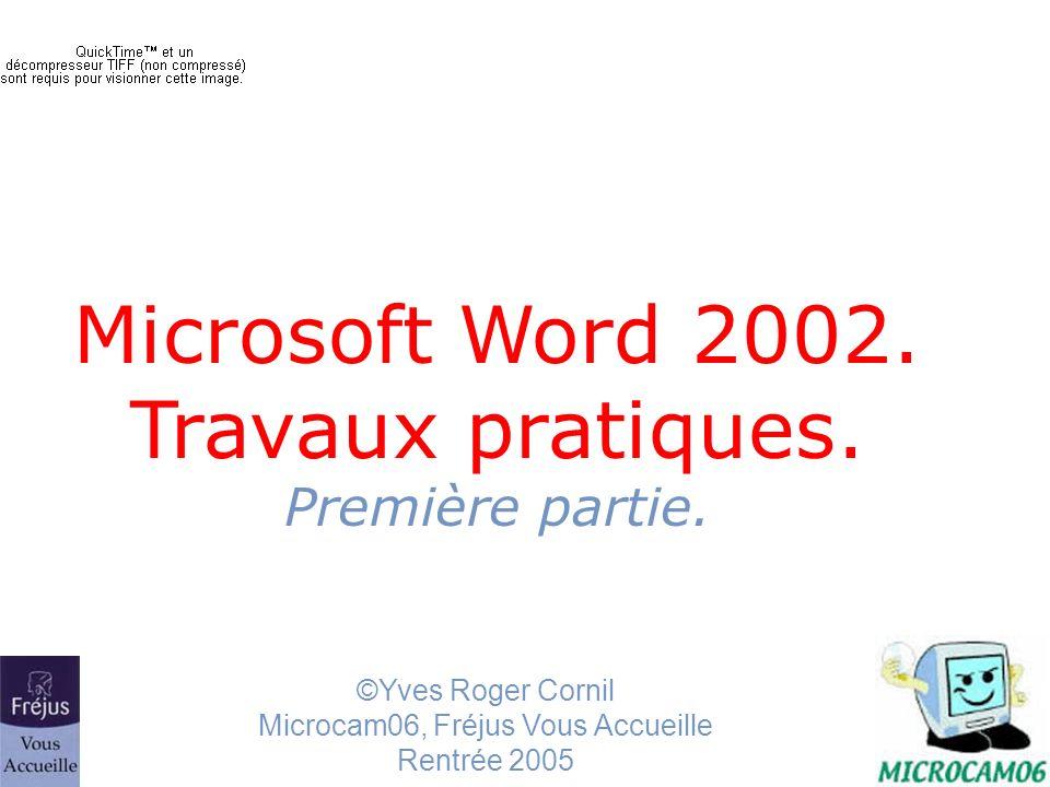 traitement de texte Microsoft Word11 Word 2002 barre doutils Le nombre doutils est paramétrable par le menu affichage et barre doutils.