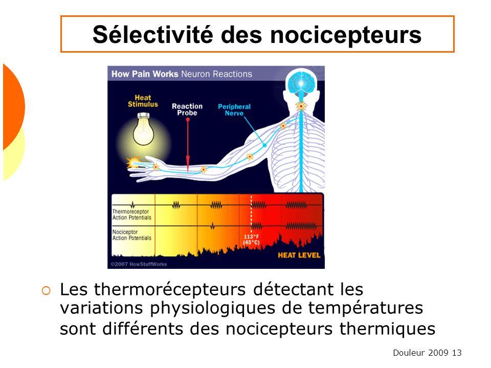 Douleur 2009 13 Sélectivité des nocicepteurs Les thermorécepteurs détectant les variations physiologiques de températures sont différents des nocicept