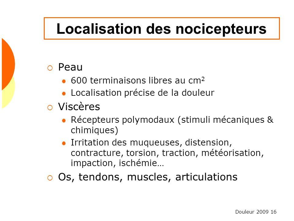 Douleur 2009 16 Localisation des nocicepteurs Peau 600 terminaisons libres au cm 2 Localisation précise de la douleur Viscères Récepteurs polymodaux (
