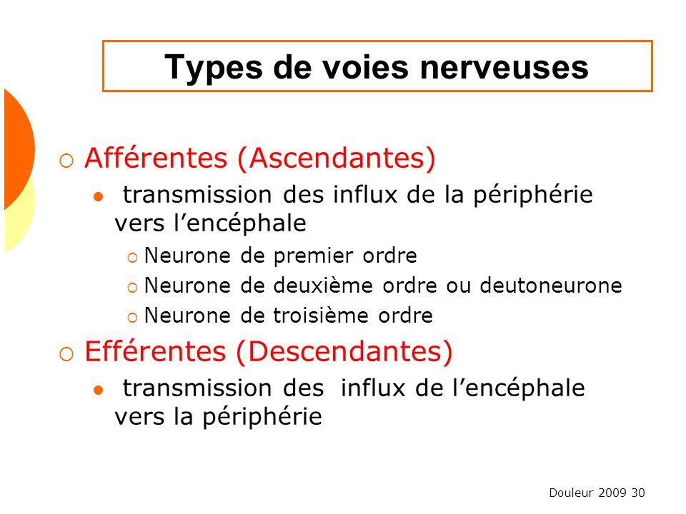 Douleur 2009 30 Types de voies nerveuses Afférentes (Ascendantes) transmission des influx de la périphérie vers lencéphale Neurone de premier ordre Ne