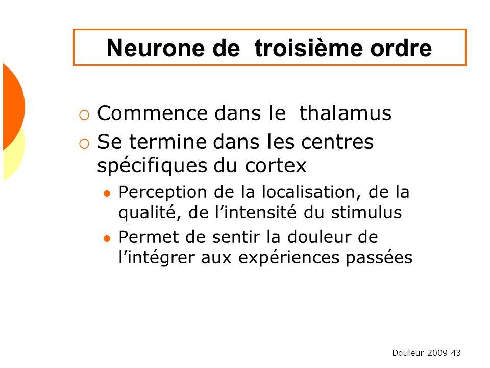 Douleur 2009 43 Neurone de troisième ordre Commence dans le thalamus Se termine dans les centres spécifiques du cortex Perception de la localisation,