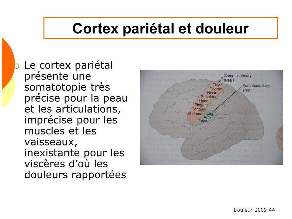 Douleur 2009 44 Cortex pariétal et douleur Le cortex pariétal présente une somatotopie très précise pour la peau et les articulations, imprécise pour
