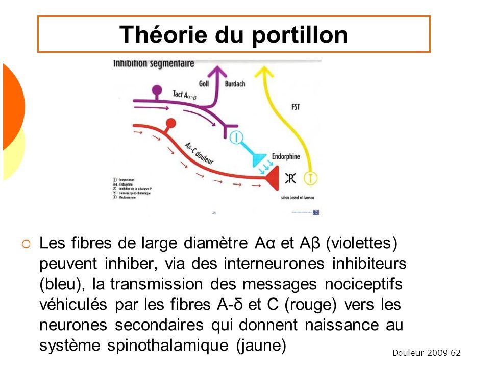 Douleur 2009 62 Théorie du portillon Les fibres de large diamètre Aα et Aβ (violettes) peuvent inhiber, via des interneurones inhibiteurs (bleu), la t