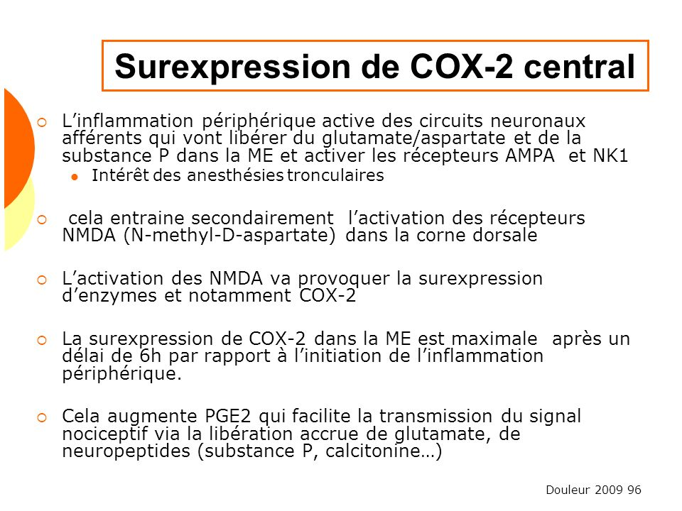 Douleur 2009 96 Surexpression de COX-2 central Linflammation périphérique active des circuits neuronaux afférents qui vont libérer du glutamate/aspart