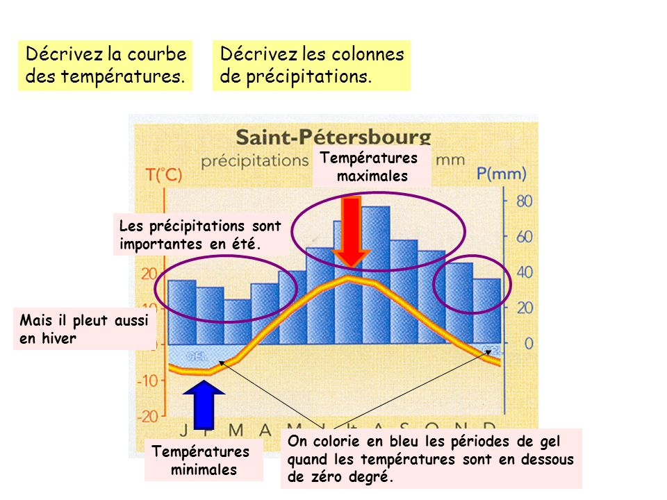 Décrivez la courbe des températures. Décrivez les colonnes de précipitations. Températures maximales Températures minimales On colorie en bleu les pér