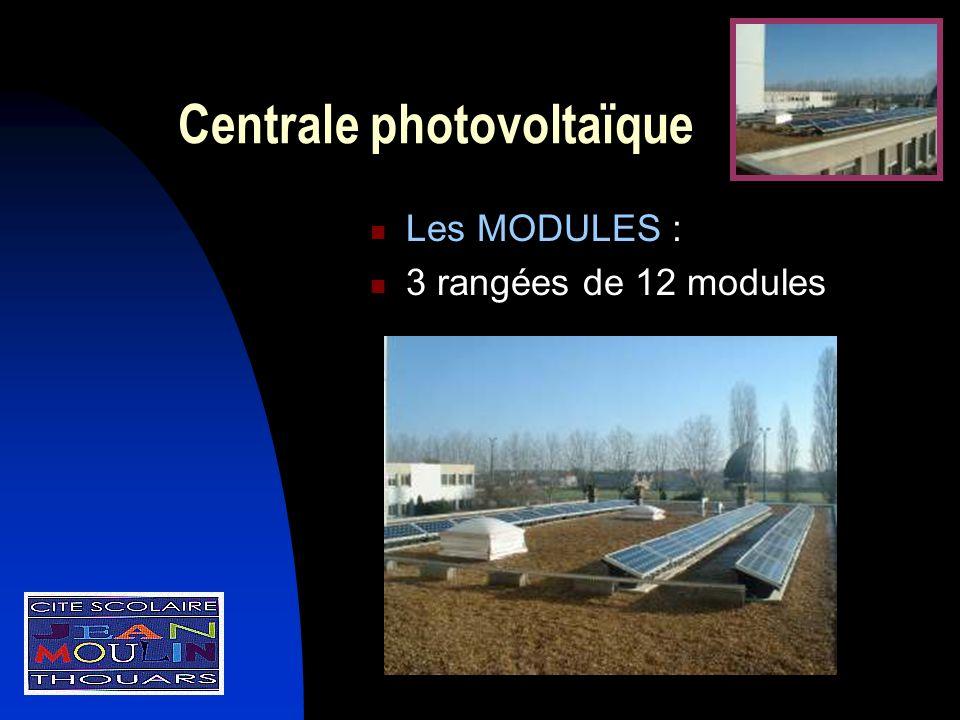 Centrale photovoltaïque Les MODULES : 3 rangées de 12 modules