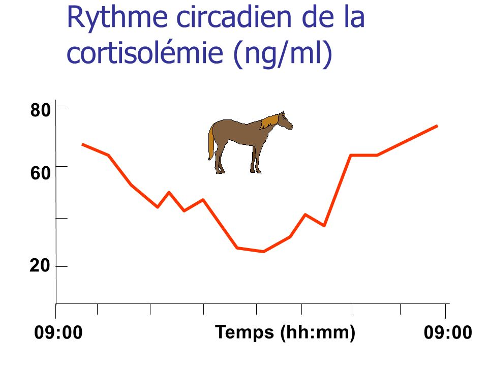 Rythme circadien de la cortisolémie (ng/ml) Temps (hh:mm) 09:00 20 60 80