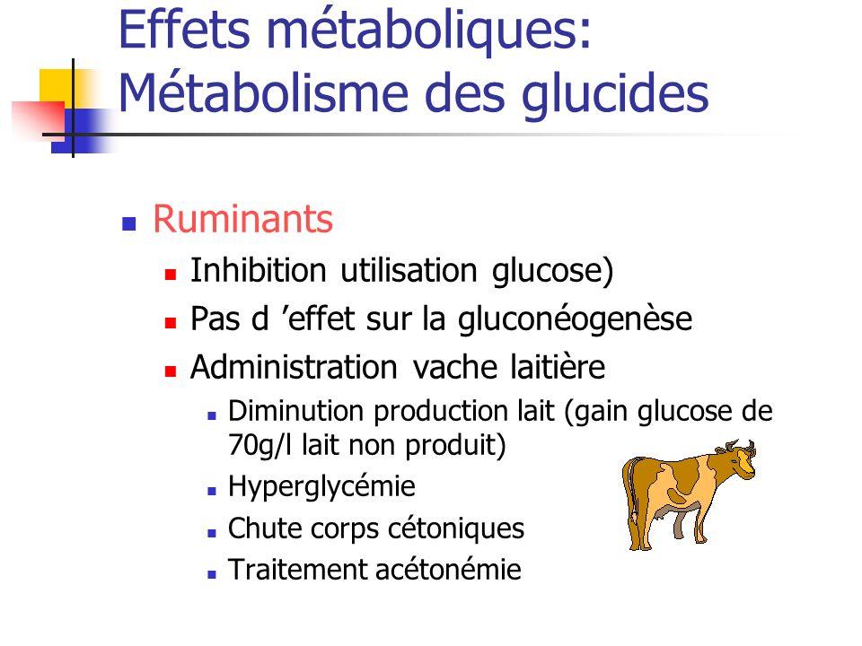 Effets métaboliques: Métabolisme des glucides Ruminants Inhibition utilisation glucose) Pas d effet sur la gluconéogenèse Administration vache laitièr