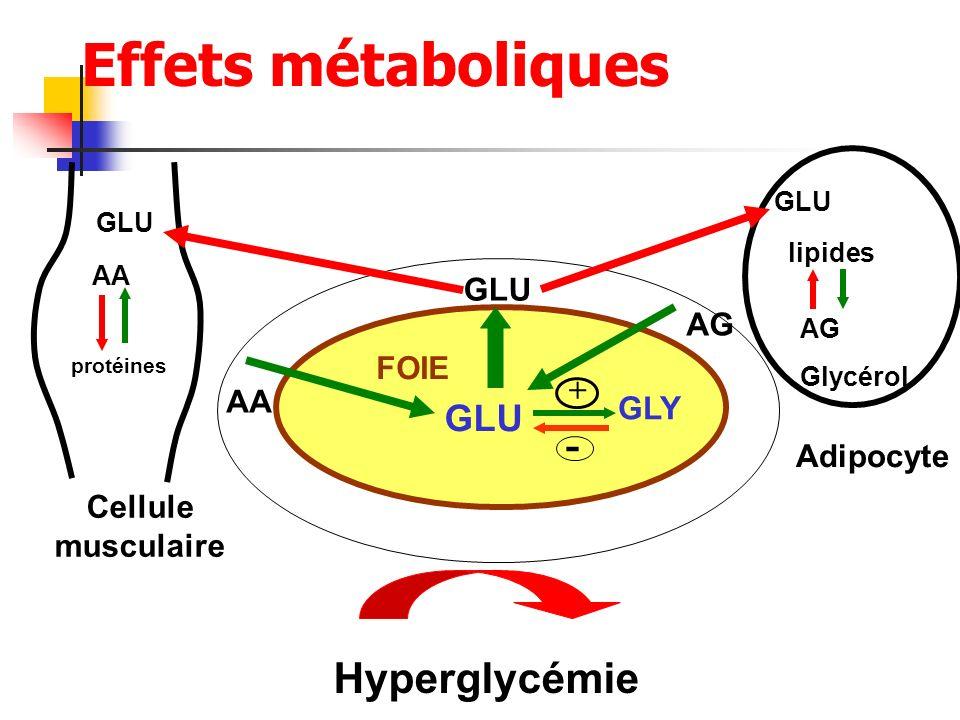 Effets métaboliques FOIE GLU Adipocyte AA GLU Cellule musculaire lipides AG Glycérol Hyperglycémie GLY + - AG GLU AA protéines GLU