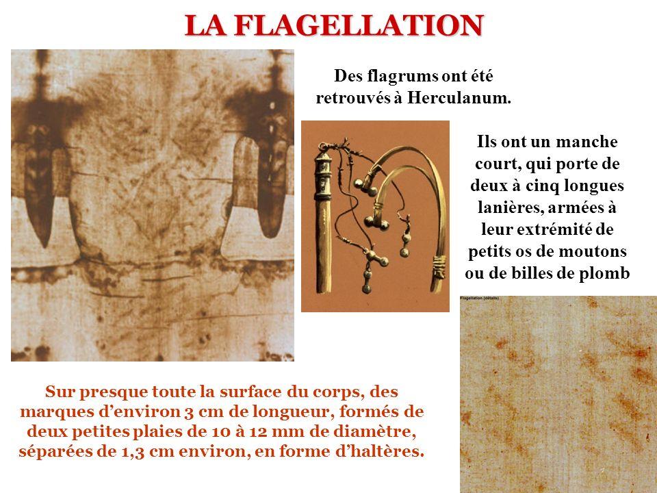 LA FLAGELLATION Ils ont un manche court, qui porte de deux à cinq longues lanières, armées à leur extrémité de petits os de moutons ou de billes de plomb Des flagrums ont été retrouvés à Herculanum.