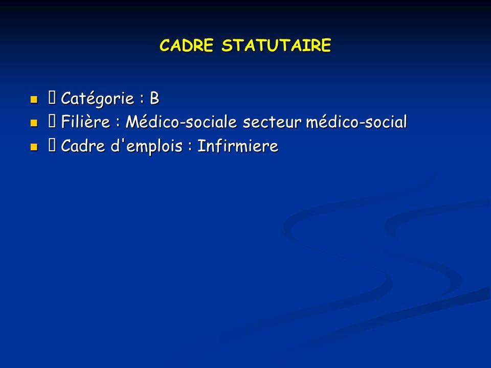 CADRE STATUTAIRE Catégorie : B Catégorie : B Filière : Médico-sociale secteur médico-social Filière : Médico-sociale secteur médico-social Cadre d emplois : Infirmiere Cadre d emplois : Infirmiere