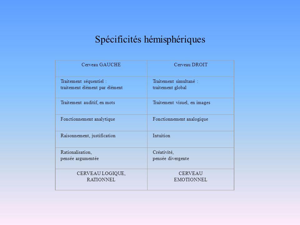 Spécificités hémisphériques Cerveau GAUCHECerveau DROIT Traitement séquentiel : traitement élément par élément Traitement simultané : traitement globa