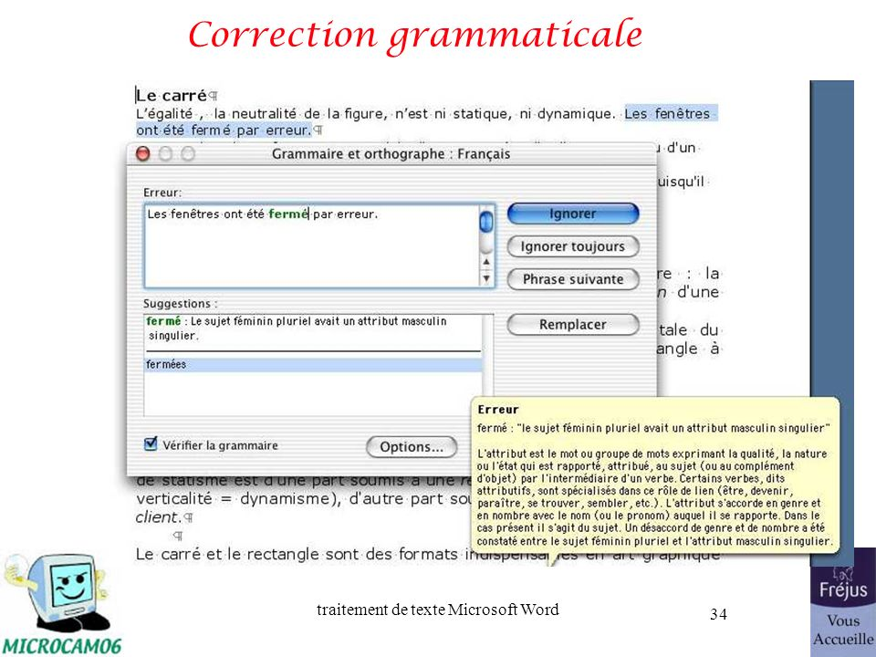 traitement de texte Microsoft Word 34 Correction grammaticale