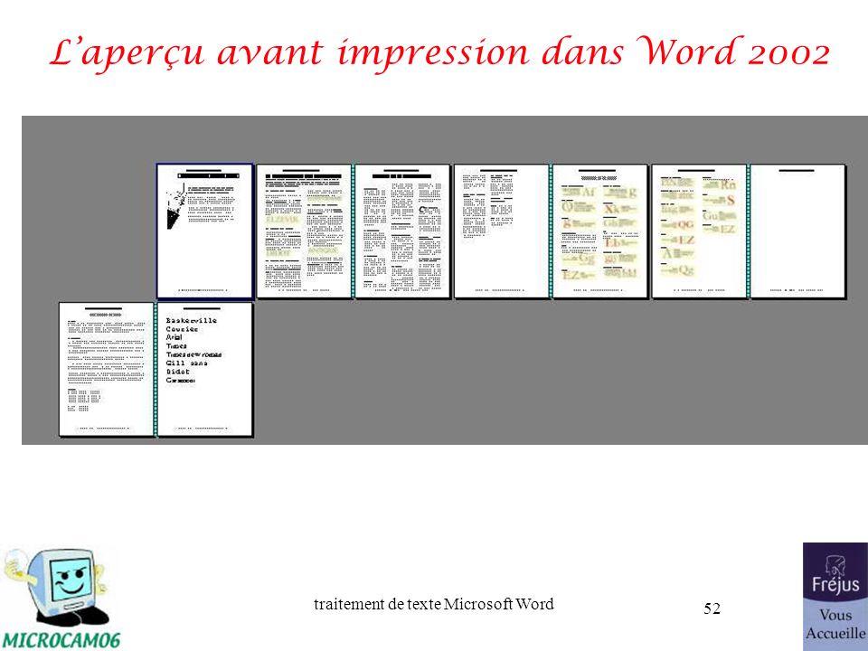 traitement de texte Microsoft Word 52 Laperçu avant impression dans Word 2002