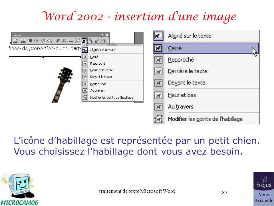 traitement de texte Microsoft Word 85 Word 2002 - insertion dune image Licône dhabillage est représentée par un petit chien. Vous choisissez lhabillag