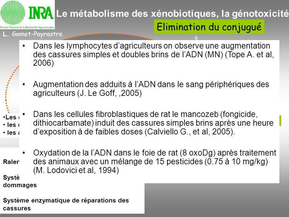 Elimination du conjugué Enzyme du Métabolisme des xénobiotiques les systèmes de détoxification pesticides Dommages à lADN L. Gamet-Payrastre RNA, Prot