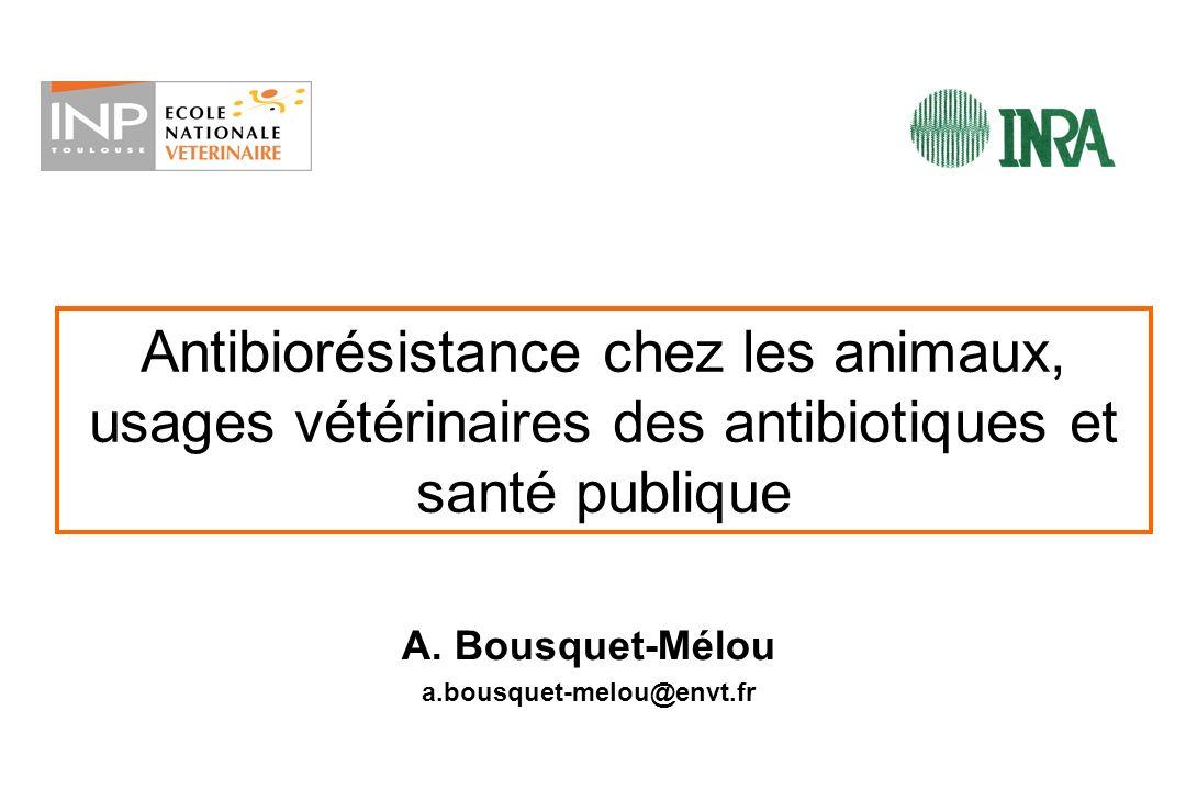 Cas 1 : FLUOROQUINOLONES Cas 2 : CEPHALOSPORINES - Mécanismes de résistance plasmidiques - Transmission verticale et horizontale - Problème pour TOUTES les bactéries résistantes sélectionnées chez lanimal, qui servent de véhicules aux gènes de résistance Antibiotiques chez les animaux: quels risques pour lHomme .