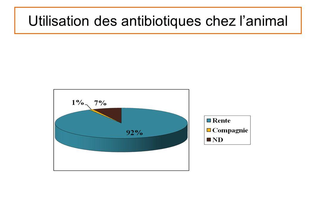 Utilisation des antibiotiques chez lanimal