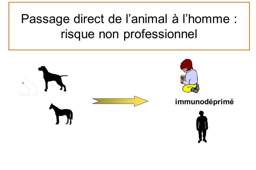 immunodéprimé Passage direct de lanimal à lhomme : risque non professionnel