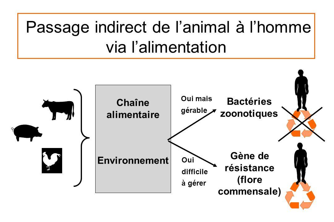 Passage indirect de lanimal à lhomme via lalimentation Chaîne alimentaire Environnement Bactéries zoonotiques Gène de résistance (flore commensale) Ou