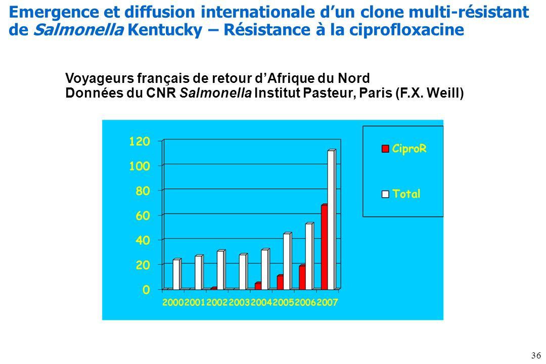 Voyageurs français de retour dAfrique du Nord Données du CNR Salmonella Institut Pasteur, Paris (F.X. Weill) Emergence et diffusion internationale dun