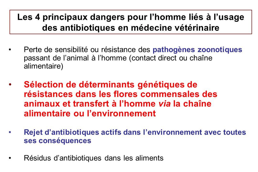 Les dangers de santé publique liés aux pathogènes zoonotiques et aux gènes de résistance Transmission de pathogènes zoonotiques devenus résistants aux AB –Salmonella –Campylobacter –E.
