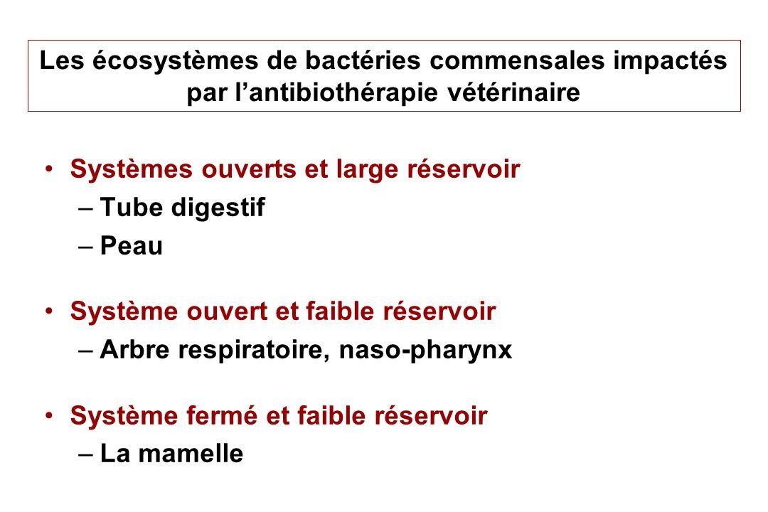 Les écosystèmes de bactéries commensales impactés par lantibiothérapie vétérinaire Systèmes ouverts et large réservoir –Tube digestif –Peau Système ou
