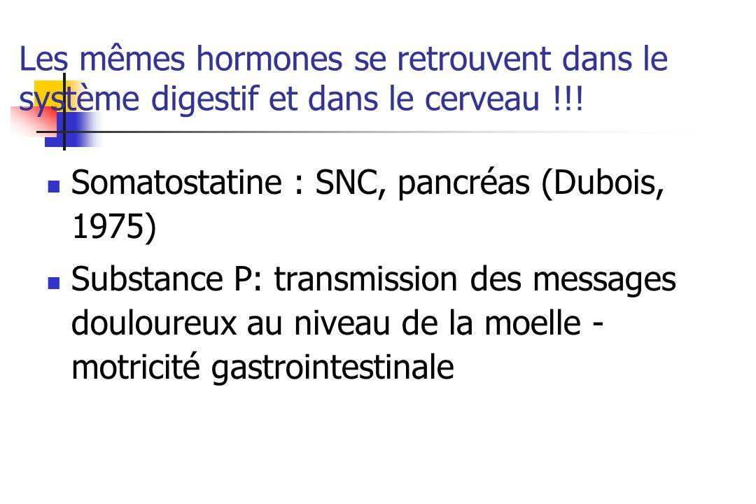 Les hormones hypothalamiques