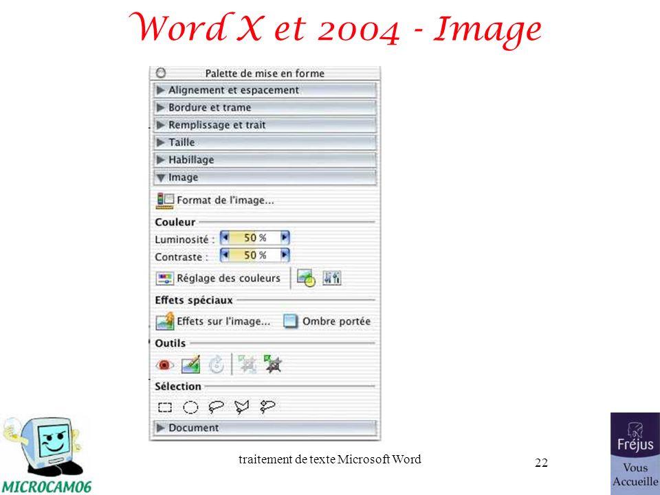 traitement de texte Microsoft Word 22 Word X et 2004 - Image