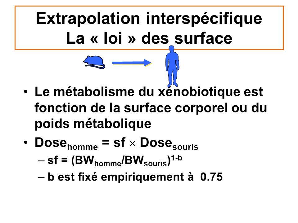 Extrapolation interspécifique La « loi » des surface Le métabolisme du xénobiotique est fonction de la surface corporel ou du poids métabolique Dose h