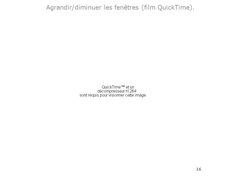 16 Agrandir/diminuer les fenêtres (film QuickTime).