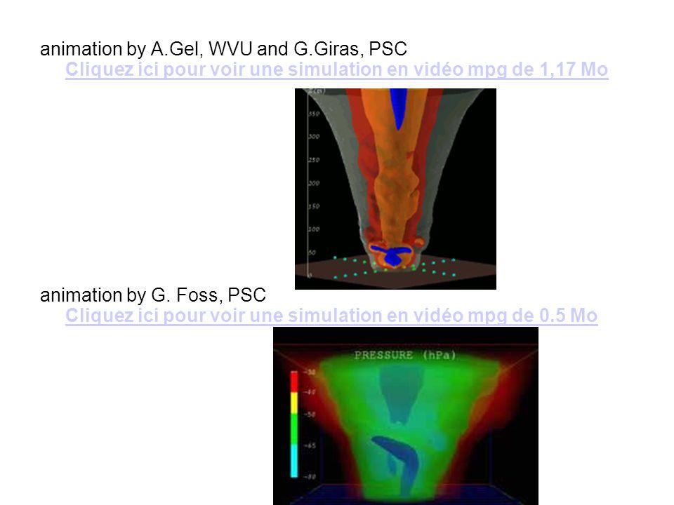 animation by A.Gel, WVU and G.Giras, PSC Cliquez ici pour voir une simulation en vidéo mpg de 1,17 Mo Cliquez ici pour voir une simulation en vidéo mp