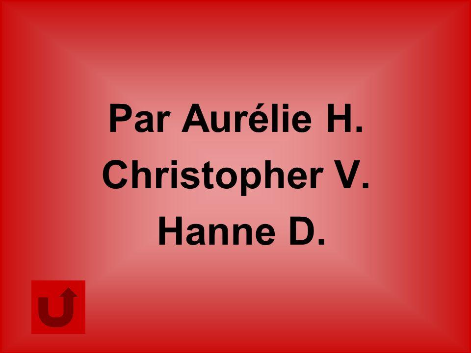 Par Aurélie H. Christopher V. Hanne D.